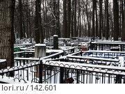 Купить «Кунцевское кладбище. Москва.», фото № 142601, снято 2 декабря 2007 г. (c) Николай Коржов / Фотобанк Лори