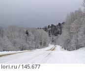 Купить «Зимняя дорога, Приморский край», фото № 145677, снято 1 апреля 2007 г. (c) Олег Рубик / Фотобанк Лори