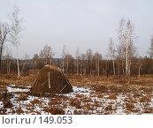 Купить «Забытый стожок, зима, Приморье», фото № 149053, снято 8 декабря 2007 г. (c) Олег Рубик / Фотобанк Лори