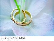 Купить «Два обручальных кольца», фото № 150689, снято 7 сентября 2007 г. (c) Кирилл Николаев / Фотобанк Лори