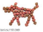 Купить «Корм для собак», фото № 151949, снято 19 марта 2019 г. (c) Угоренков Александр / Фотобанк Лори