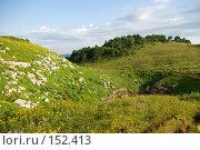 Купить «Альпийские луга. Плато Лаго-Наки. Кавказский заповедник», фото № 152413, снято 10 августа 2007 г. (c) Петухов Геннадий / Фотобанк Лори