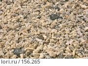 Купить «Коралловый берег», фото № 156265, снято 5 декабря 2007 г. (c) Николай / Фотобанк Лори