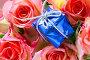 Подарок и розы, фото № 157913, снято 28 мая 2017 г. (c) Роман Сигаев / Фотобанк Лори