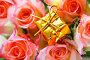Подарок и розы, фото № 158993, снято 23 мая 2017 г. (c) Роман Сигаев / Фотобанк Лори