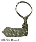 Купить «Персональный аксессуар бизнесмена - галстук, в виде стрелки», фото № 160981, снято 25 декабря 2006 г. (c) Александр Паррус / Фотобанк Лори