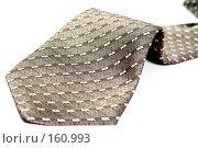 Купить «Нижняя часть галстука с узором», фото № 160993, снято 26 декабря 2006 г. (c) Александр Паррус / Фотобанк Лори