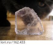 Купить «Кристалл соли из соляной шахты г. Соль-Илецк», фото № 162433, снято 27 декабря 2007 г. (c) Дудакова / Фотобанк Лори