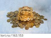Купить «Жаба с монеткой на деньгах», эксклюзивное фото № 163153, снято 29 декабря 2007 г. (c) Александр Щепин / Фотобанк Лори