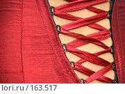 Купить «Шнуровка корсета красного цвета», фото № 163517, снято 26 июля 2007 г. (c) Александр Паррус / Фотобанк Лори
