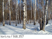 Купить «Зима», фото № 168357, снято 5 января 2008 г. (c) Карелин Д.А. / Фотобанк Лори