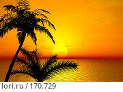 Купить «Тропический закат», иллюстрация № 170729 (c) ElenArt / Фотобанк Лори
