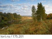 Купить «Осенний пейзаж», фото № 175201, снято 23 сентября 2007 г. (c) Николай Федорин / Фотобанк Лори