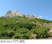 Купить «Гора Эчки-Даг в Крыму», фото № 177485, снято 25 августа 2007 г. (c) Татьяна Высоцких / Фотобанк Лори