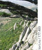 Купить «Вид на скалы с вершины горы Эчки-Даг в Крыму», фото № 177489, снято 27 августа 2007 г. (c) Татьяна Высоцких / Фотобанк Лори