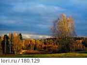 Купить «Осеннее настроение», фото № 180129, снято 22 апреля 2018 г. (c) Aleksander Kaasik / Фотобанк Лори