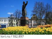 Купить «Памятник Минину в Нижнем Новгороде», фото № 182897, снято 15 мая 2007 г. (c) Igor Lijashkov / Фотобанк Лори