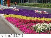Купить «Праздник цветов. Лужники 2006г.», фото № 183713, снято 30 июля 2006 г. (c) Пшеничников Анатолий / Фотобанк Лори