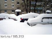 Купить «Автомобили под снегом», фото № 185313, снято 24 января 2008 г. (c) Светлана Кириллова / Фотобанк Лори
