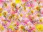 Цветочный фон, фото № 185865, снято 6 октября 2007 г. (c) Юрий Брыкайло / Фотобанк Лори