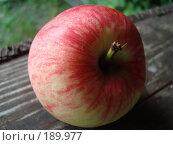 Купить «Красное яблоко на старой деревянной доске», фото № 189977, снято 18 февраля 2007 г. (c) Елена Кретова / Фотобанк Лори