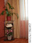 Купить «Фрагмент гостиной  с полкой», фото № 192417, снято 2 февраля 2008 г. (c) Ханыкова Людмила / Фотобанк Лори