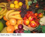 Купить «Фрукты», фото № 192485, снято 30 сентября 2007 г. (c) Юлия Селезнева / Фотобанк Лори