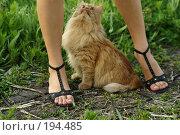 Выше нос! Стоковое фото, фотограф Николай Федорин / Фотобанк Лори