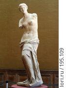 Купить «Венера», фото № 195109, снято 7 января 2005 г. (c) Михаил Мандрыгин / Фотобанк Лори