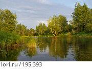 Купить «Волжские протоки», фото № 195393, снято 26 июля 2007 г. (c) Николай Федорин / Фотобанк Лори