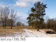 Купить «Проселочная дорога», фото № 195765, снято 3 февраля 2008 г. (c) Игорь Соколов / Фотобанк Лори