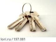 Купить «Ключи», фото № 197081, снято 3 февраля 2008 г. (c) Александр Бербасов / Фотобанк Лори