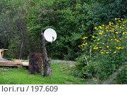 Купить «Спутниковая антенна в саду», фото № 197609, снято 26 августа 2007 г. (c) Юрий Синицын / Фотобанк Лори