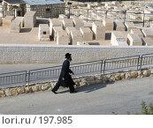 Купить «Ортодоксальный иудей», фото № 197985, снято 30 ноября 2007 г. (c) Юлия Селезнева / Фотобанк Лори