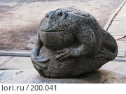 Купить «Жаба на камне. Тверь», фото № 200041, снято 3 августа 2007 г. (c) Елена Прокопова / Фотобанк Лори