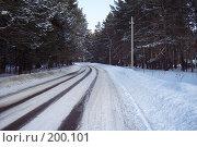 Зимняя дорога в лесу. Стоковое фото, фотограф Алексей Лоцман / Фотобанк Лори