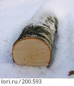 Купить «Бревно в снегу», фото № 200593, снято 3 февраля 2008 г. (c) Сергей Самсонов / Фотобанк Лори