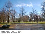 Купить «Весенний парк», фото № 200749, снято 9 февраля 2008 г. (c) Алёна Фомина / Фотобанк Лори