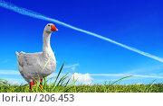Купить «Запасной аэродром», фото № 206453, снято 2 сентября 2007 г. (c) Анатолий Теребенин / Фотобанк Лори