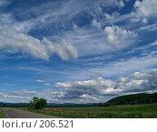 Купить «Летние облака», фото № 206521, снято 21 июня 2007 г. (c) Олег Рубик / Фотобанк Лори