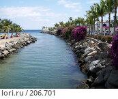 Купить «Канарские острова, Гран-Канария», фото № 206701, снято 27 марта 2007 г. (c) Алёна Фомина / Фотобанк Лори