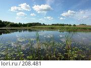 Купить «Деревенский пруд», фото № 208481, снято 2 июля 2006 г. (c) Александр Буровцев / Фотобанк Лори