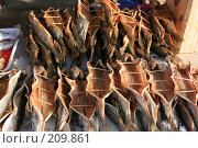 Байкальская рыба. Стоковое фото, фотограф Дарья Киселева / Фотобанк Лори