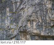 Купить «Текстура поверхности скалы», фото № 210117, снято 29 сентября 2006 г. (c) Liseykina / Фотобанк Лори