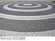 Купить «Круги из тротуарной плитки», фото № 212669, снято 28 февраля 2008 г. (c) Федор Королевский / Фотобанк Лори