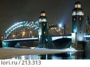 Купить «Мост Петра Великого через Неву», эксклюзивное фото № 213313, снято 21 февраля 2008 г. (c) Александр Алексеев / Фотобанк Лори
