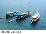 Купить «Яхты в море», фото № 213833, снято 3 июля 2020 г. (c) ElenArt / Фотобанк Лори