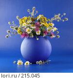 Букет из полевых цветов с колючкой, фото № 215045, снято 18 июля 2007 г. (c) Елена Блохина / Фотобанк Лори