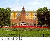 Купить «Башня Кремля среди деревьев и цветов», фото № 216121, снято 22 мая 2005 г. (c) Филин Константин / Фотобанк Лори