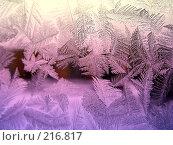 Купить «Ледяной узор на стекле», фото № 216817, снято 19 сентября 2018 г. (c) ElenArt / Фотобанк Лори